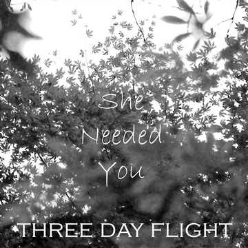 She Needed You by Three Day Flight