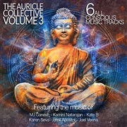 The Auricle Collective : The Auricle Collective - Volume 3