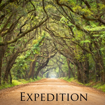 Expedition by William Arnold