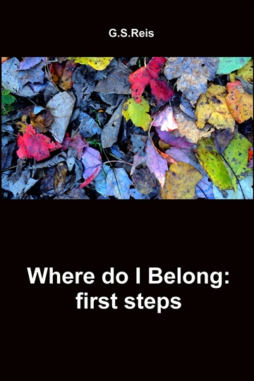 Where do I Belong: first steps