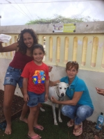 Hopi mucha conscientisa durante Dog Wash di Animal Care Clinic y Kids@ work