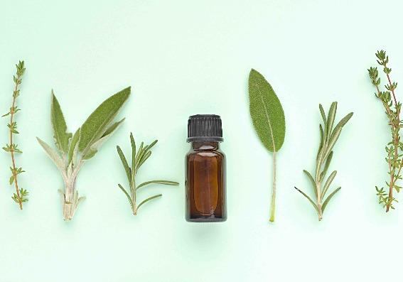 Dicho por la ciencia: estos 7 remedios naturales curan dolencias