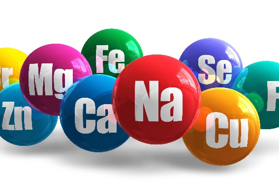 Los 10 mejores minerales y vitaminas (y dónde encontrarlos)