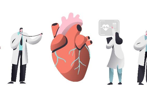 Corazón con colesterol