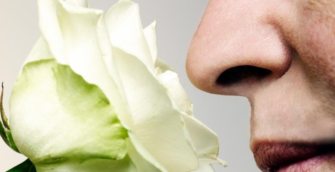 10 datos asombrosos de nuestro sentido del olfato