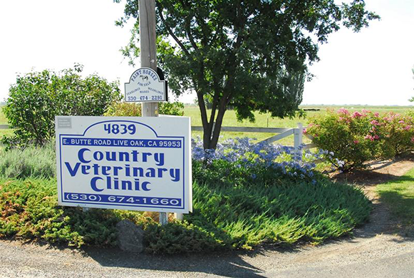 Country Veterinary Clinic - Virtual Tour