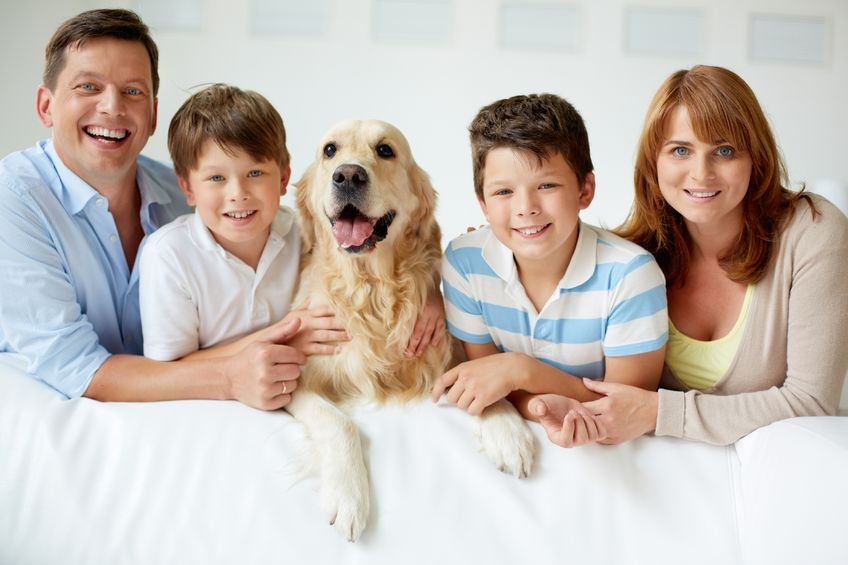 Andover Animal Hospital pets and kids