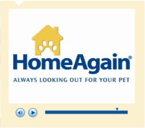 Home Again Video
