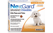 nexgard chewable