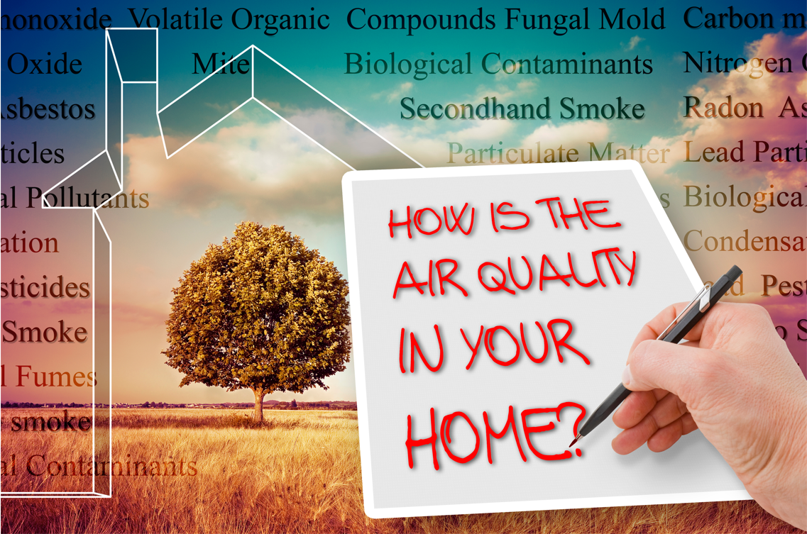 What is the Fastest Way to Improve Air Quality in my Home?