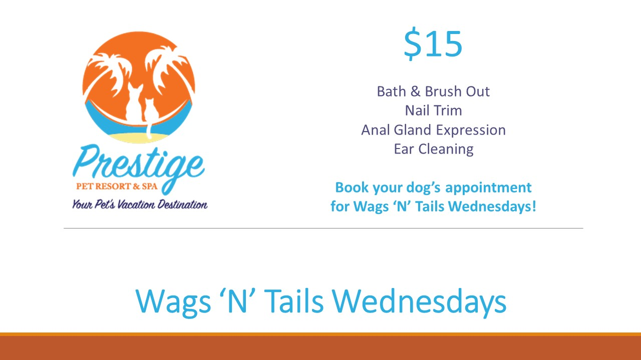 Wags 'N' Tails Wednesdays