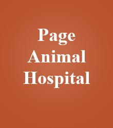 Page Animal Hospital