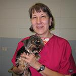 Dr. Lisa Moeller
