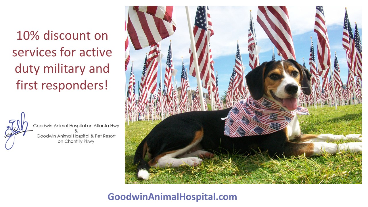 Military & First Responder Discounts for Veterinary Care