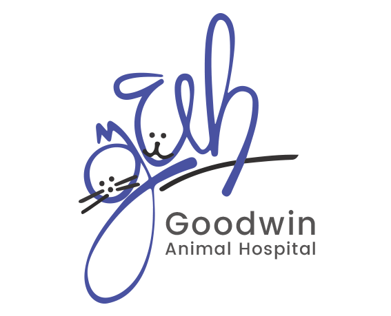 Goodwin Animal Hospital & Pet Resort Open House