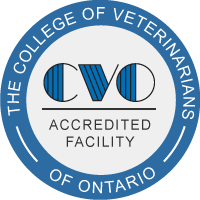 The College of Veterinarians