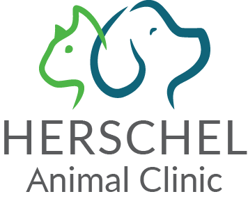 Herschel Animal Clinic Logo