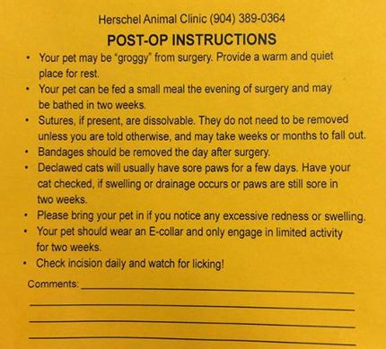 Post op instructions