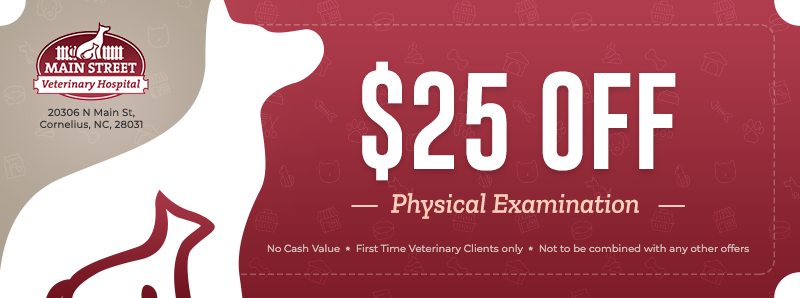 Offer 1: $25 Off Physical Exam