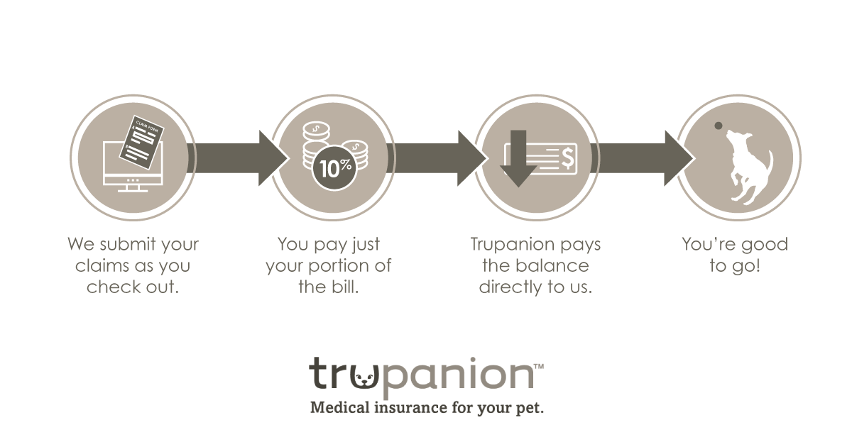 Trupanion Vet Direct Pay