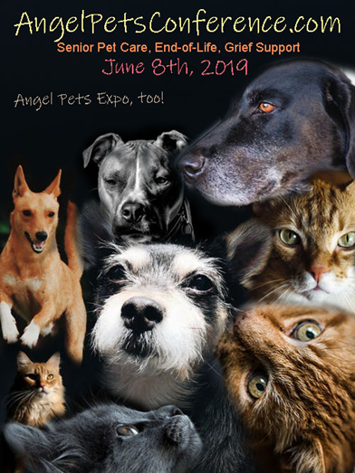 Dr. Mitchell to Speak at Angel Pets Conference