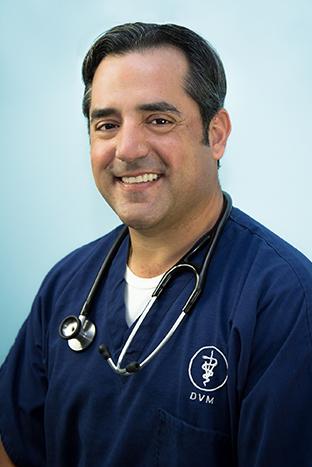 Dr. Joel Wolf, DVM