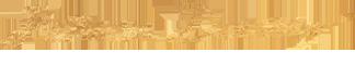 Patricia Denning Logo