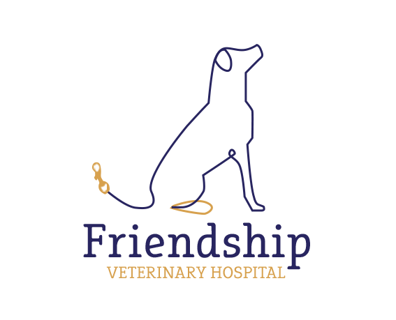 Vets & Pet Boarding in Fort Walton Beach FL | Friendship Veterinary