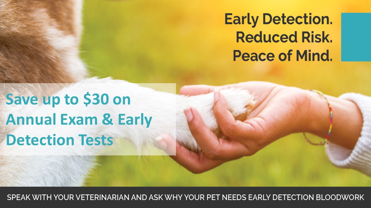 Save up to $30 on Exam & Early Detection Tests in November