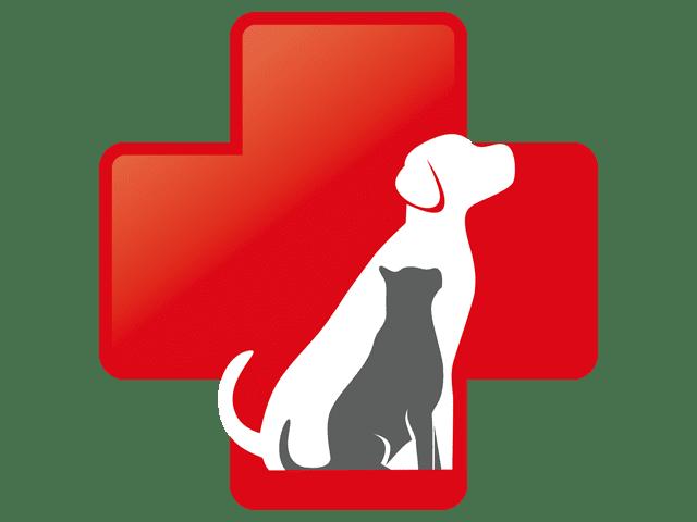 emergency veterinary care