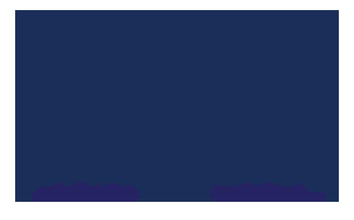 The Whittington Team