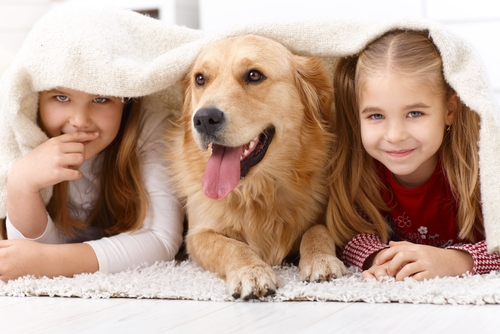 How to Stay Safe and Have Fun When Kids and Pets Play