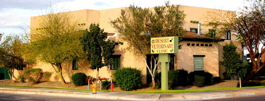 outside view of Desert Veterinary Clinic