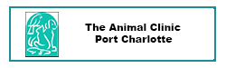 The Animal Clinic Port Charlotte