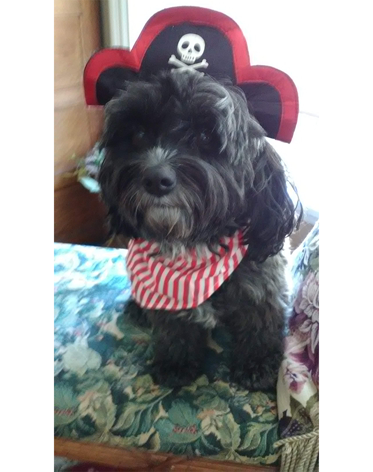 Rosie as Blackbeard the Pirate