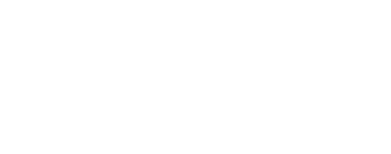 Sturgeon's Optical