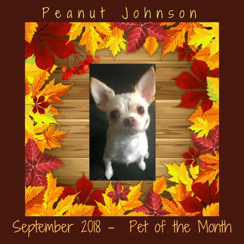 Peanut Johnson