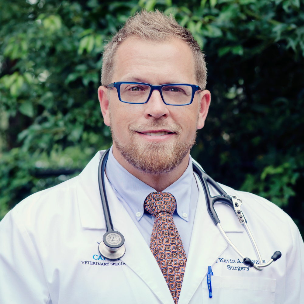 Dr. Kevin Drygas