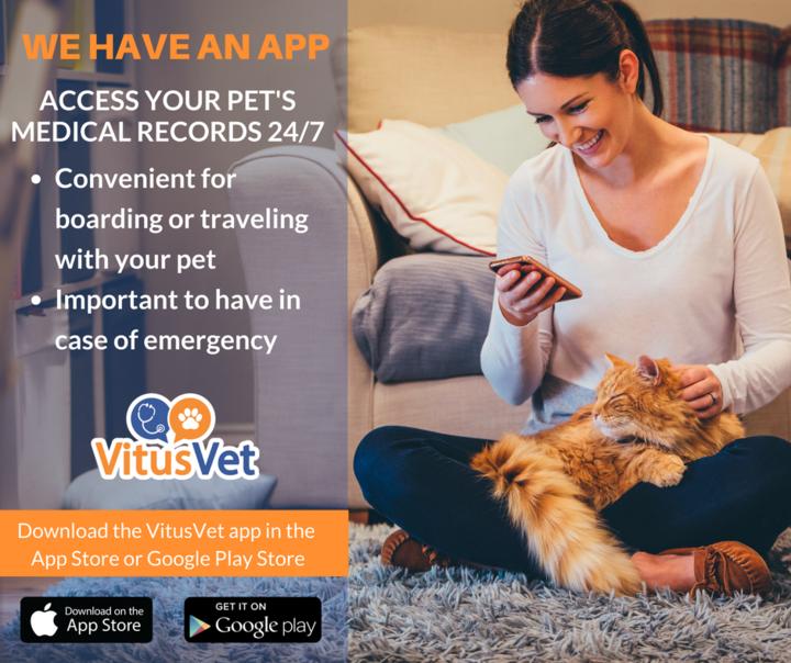 Woman using Vitus Vet App
