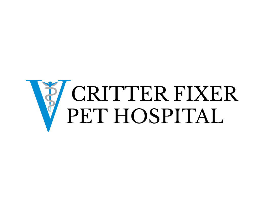 VVC Spring
