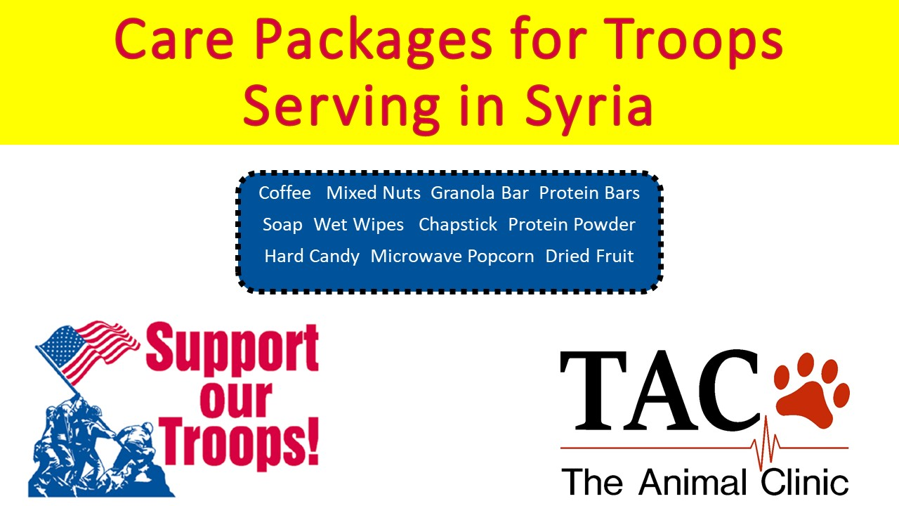 Collecting Items for Troops Serving in Syria