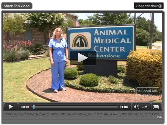 animal medical center video