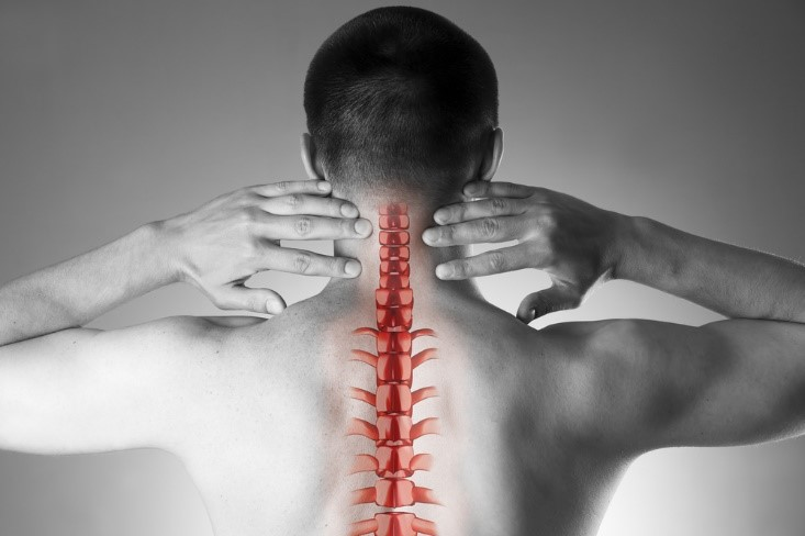 What Typically Happens During a Chiropractic Adjustment?