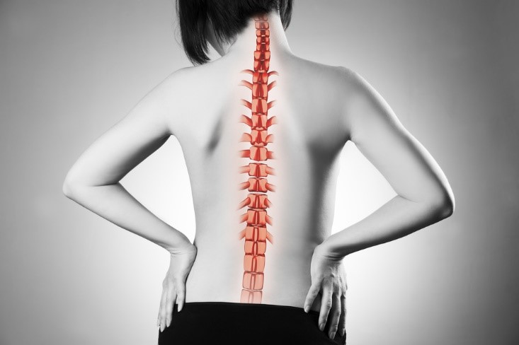 How Long Does it Take for a Lumbar Laminectomy?