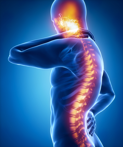 C1 & C2 Vertebrae: The Worst Spinal Cord Injuries