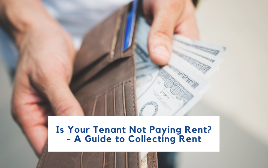 Is Your Tenant Not Paying Rent? – A Guide to Collecting Rent in Oakland