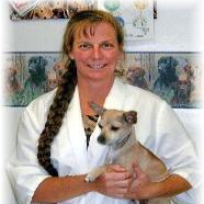 Holistic Veterinary Care in Andalusia