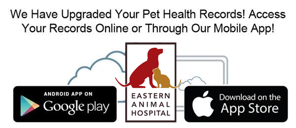 Pet Health Records