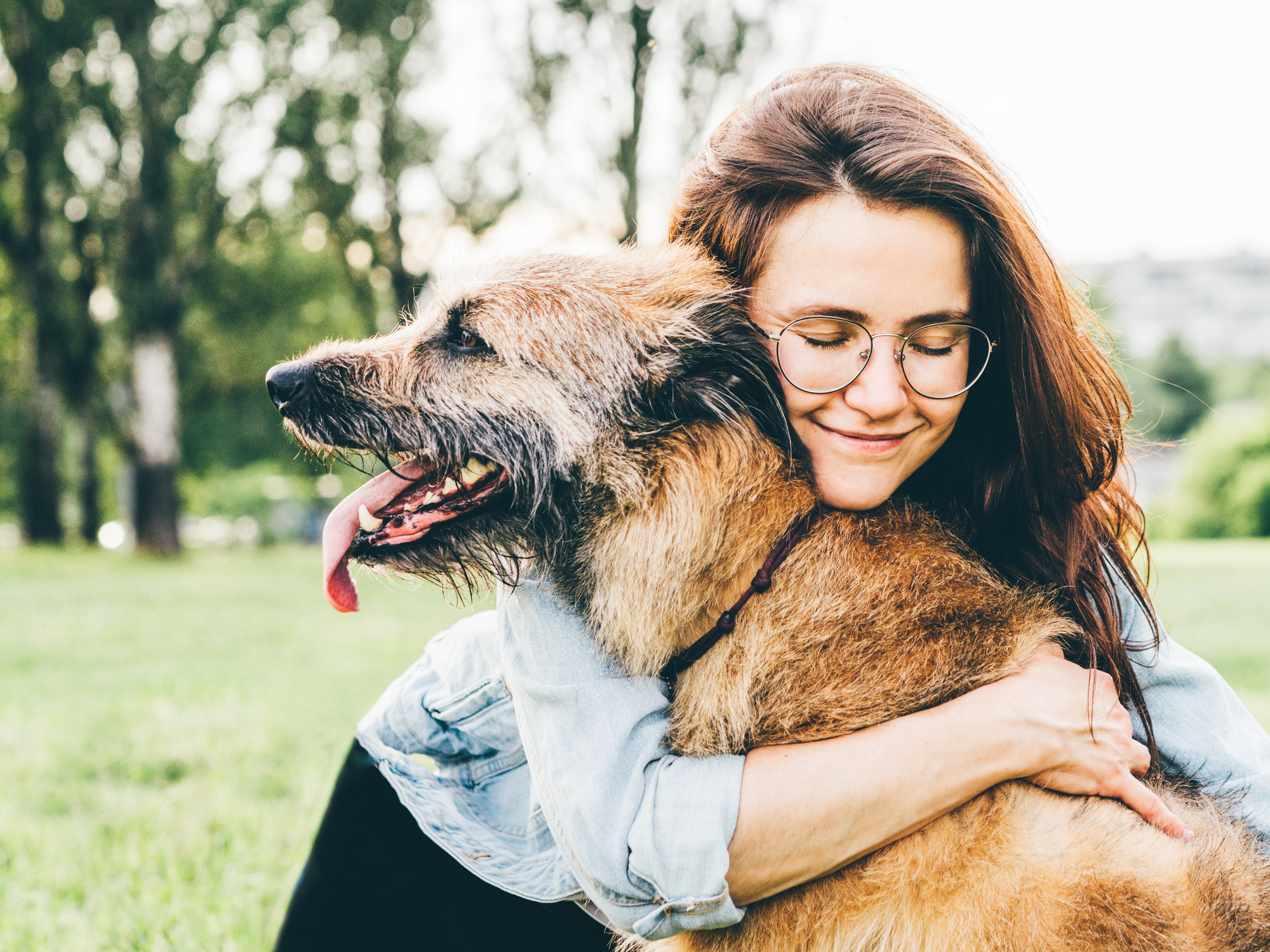 Tips to Keep Your Older Pet Happy
