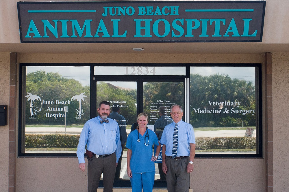 Welcome Town & Country Animal Hospital Clients